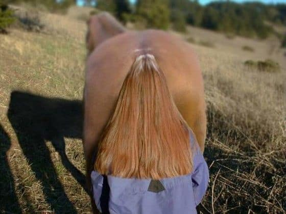 Womans hair looks like a horses tail