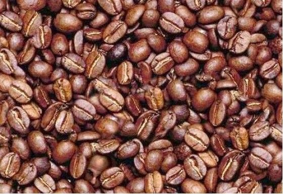 Hidden face of a man in pile of coffee beans