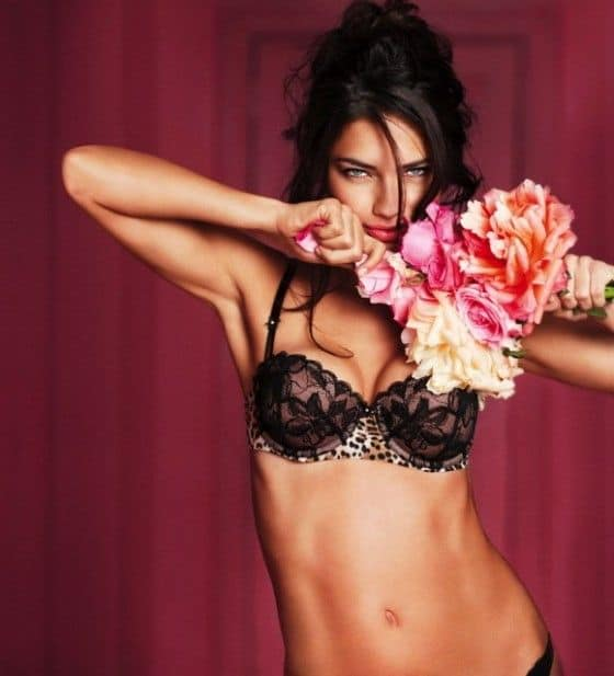 Adriana-Lima-Victorias-Secret-Lingerie-Valentines-Day