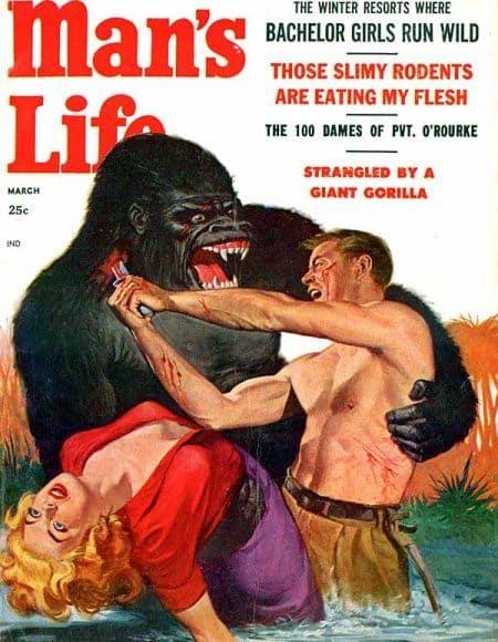 Man's Life man stabs gorilla