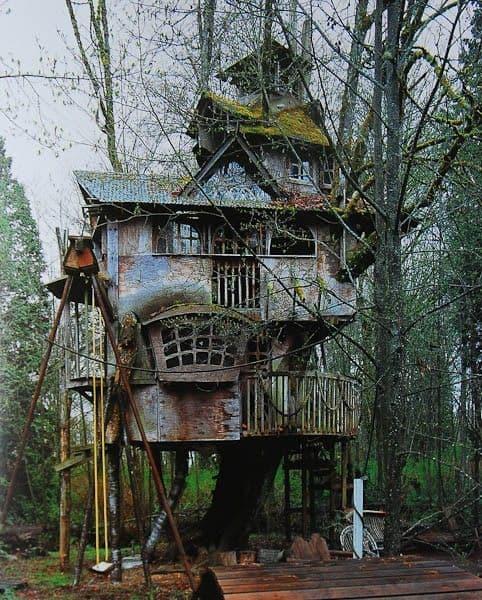 Multi-story treehouse