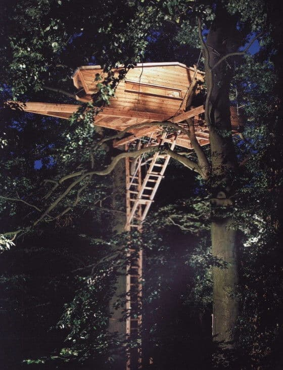 Spaceship Styled Treehouse