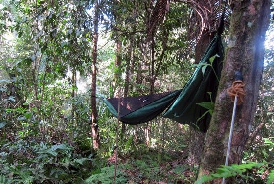Jungle Hammock in Belize