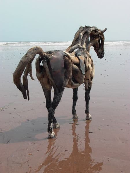 horse looking at reflection
