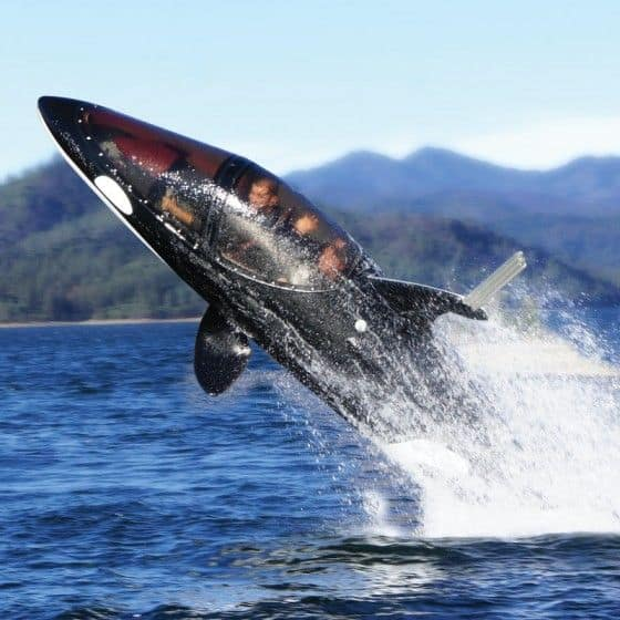 Watercraft resembles a Killer Whale