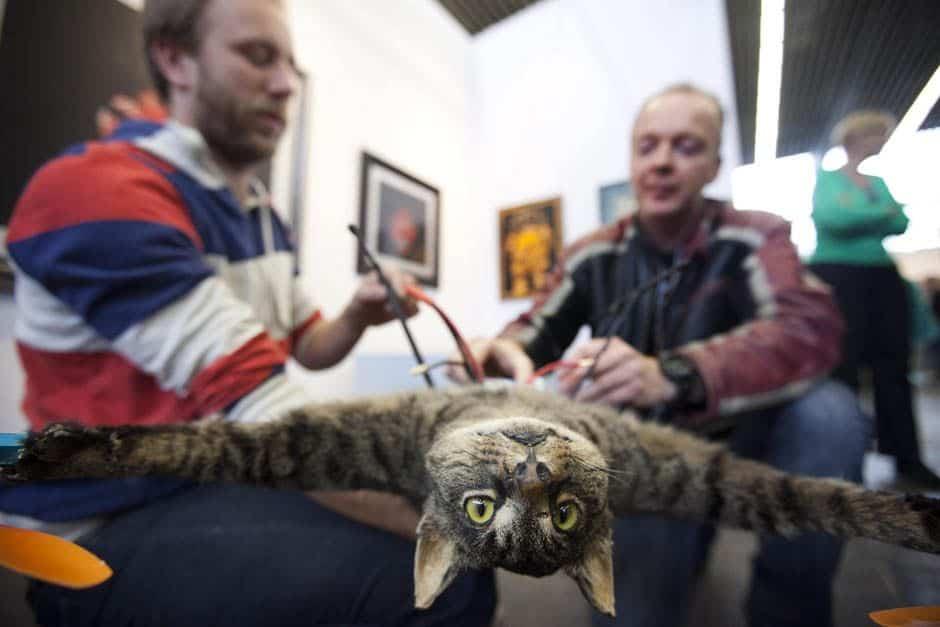 orvillecopter flying dead cat quadrotor bart jansen