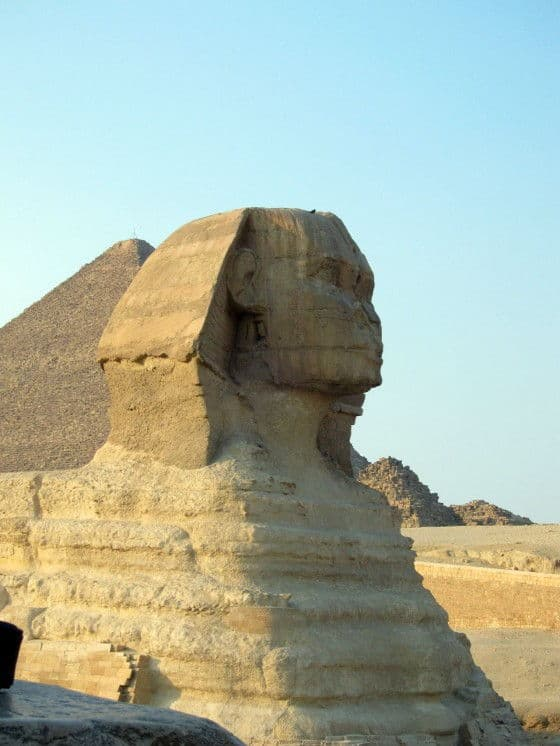 Sphinx Face