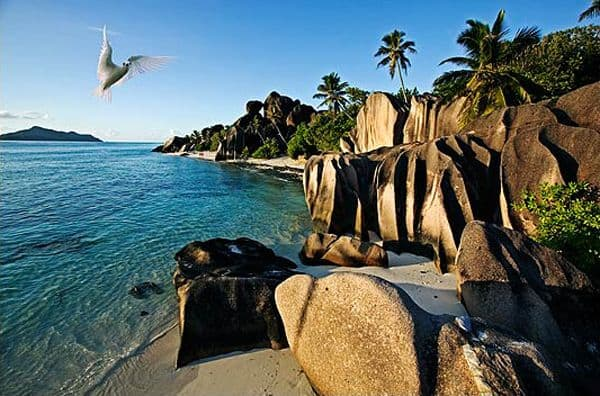 seychelles vacation islands granite birds
