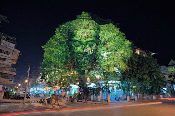 3d projection on a tree
