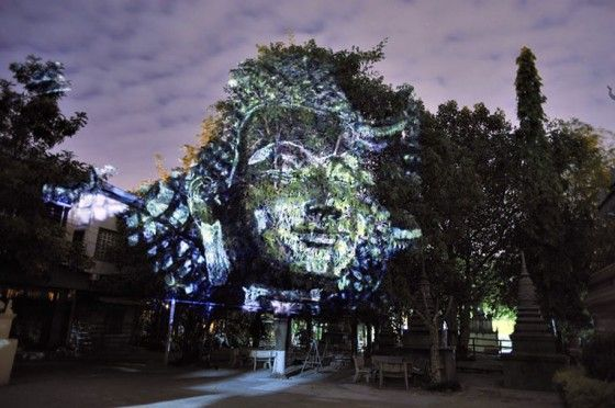 3d projected face
