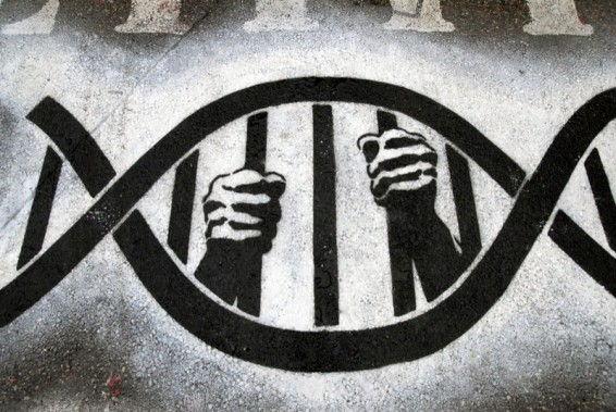 genetic-slave