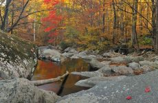 photos of the smoky mountains by Eric Gebhart