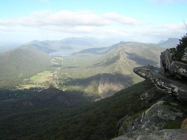 forest in grampians national park