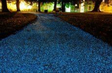 glow in the dark sidewalk