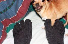 man wearing injinji toe socks