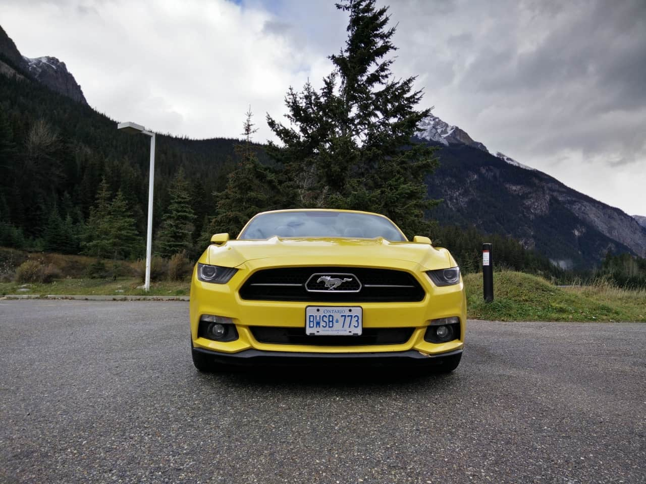 2015_Ford_Mustang_EcoBoost_Convertible_2
