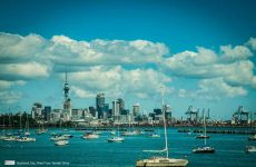 auckland by boat
