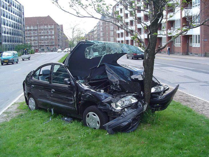 crashed car around tree