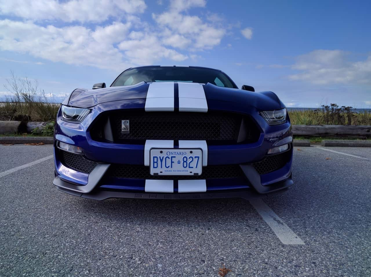 2016_ford_mustang_shelby_gt350_review_7