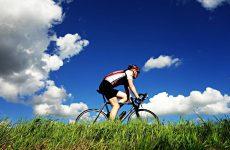nature sky summer grass cycling