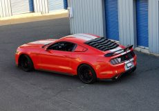 maintaining your mustang