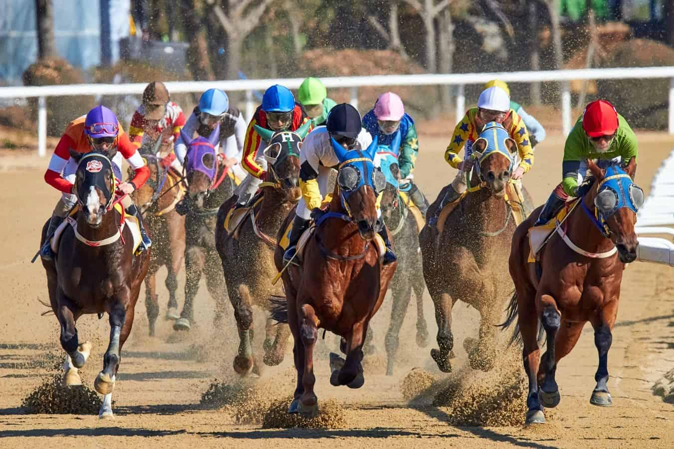 horse racing kentucky derby
