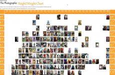 visual height weight chart