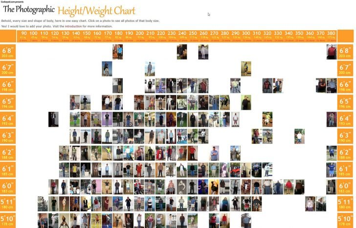 visual height weight chart