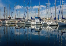 boats docked in a marina