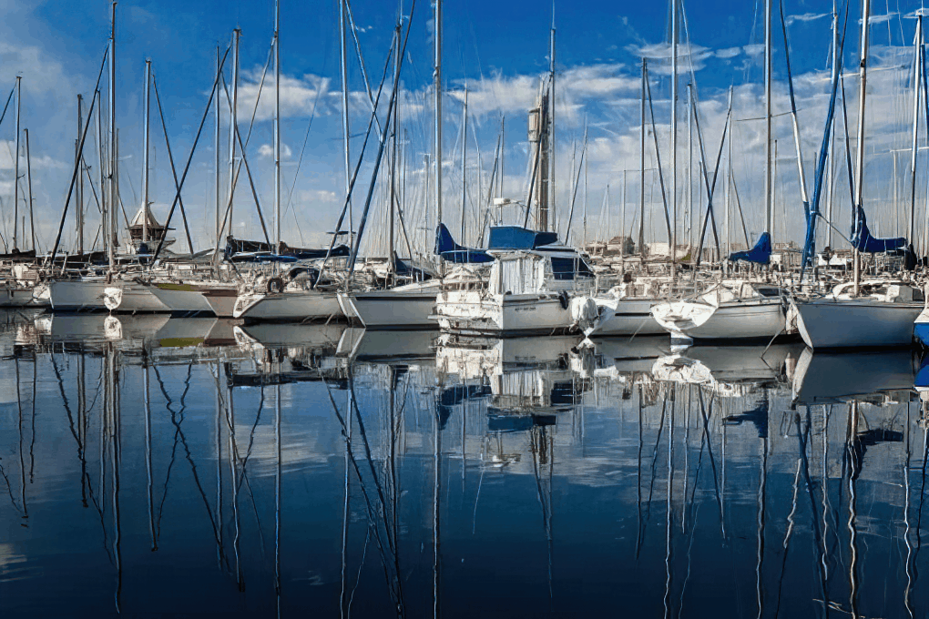 boats docked in a marina