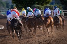 horses racing really fast