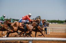 horses racing along track
