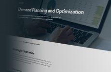 demand planning and optimization